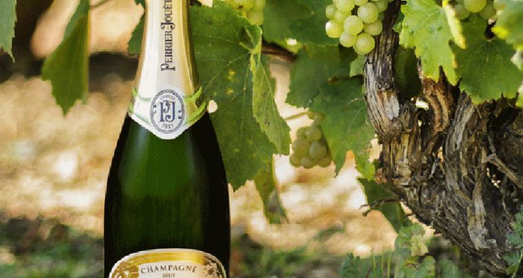 Avant le champagne, il y a la (hyper)nature