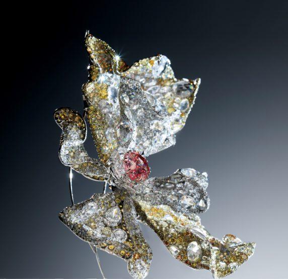 Diamant rouge sur papillon