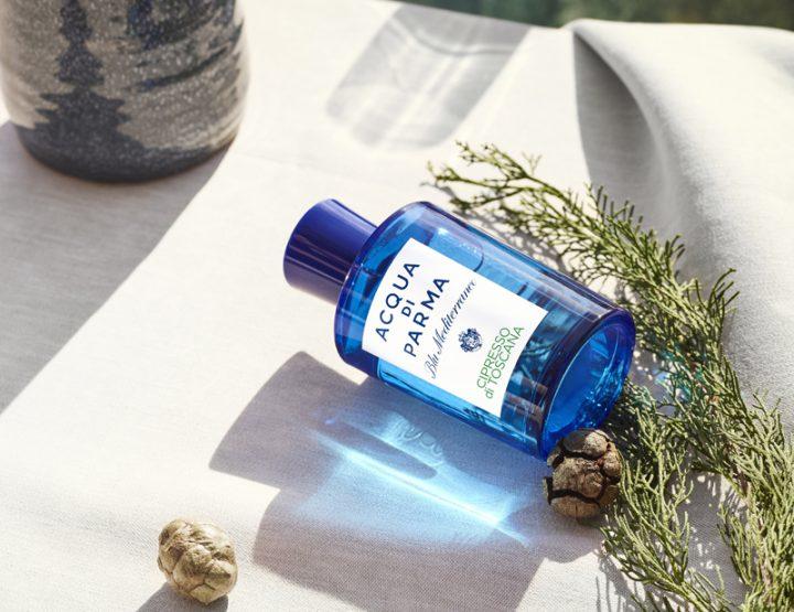 Le parfum du Cyprès de Toscane