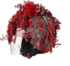 Stéphane Chapelle, casque à fleurs
