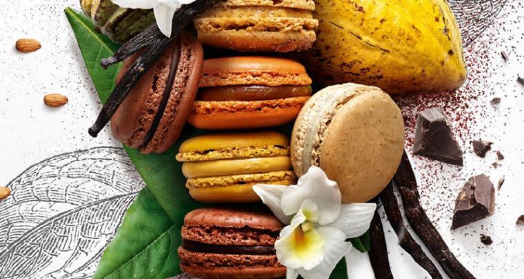 CARITATIF - Le jour du Macaron