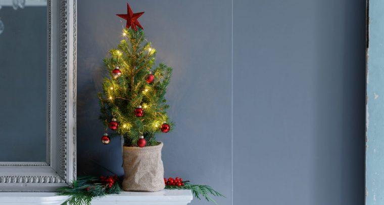 Mini sapin de Noël craquant Bloom & Wild et bouquets en ligne