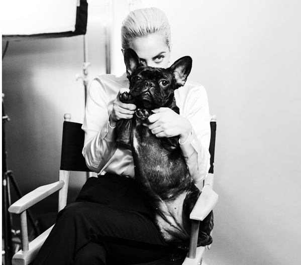 Tiffany s'offre Lady Gaga
