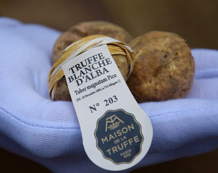 La Truffe Blanche d'Alba, certifiée et numérotée, arrive à Paris