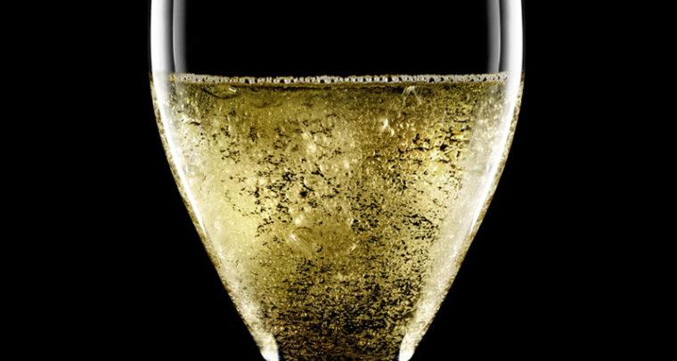 Visite fraîche en Champagne