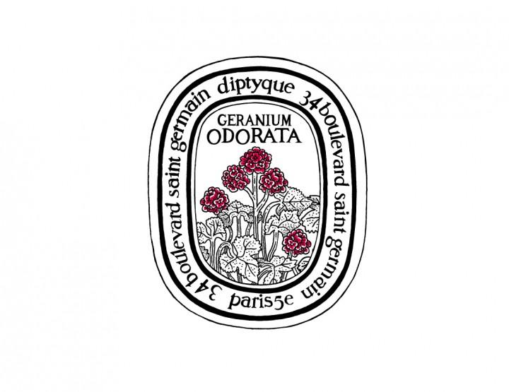 Geranium Odorata de diptyque