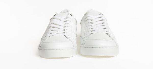 sessileXzorzetto-blanc-1